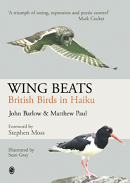 Wing Beats cover